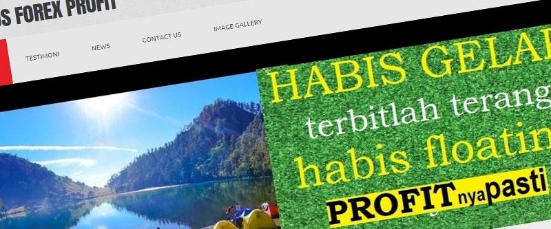 Jasa Pembuatan Website Bandung Murah  Jasa pembuatan website murah Bandung Company Profile Kursus Forex Profit