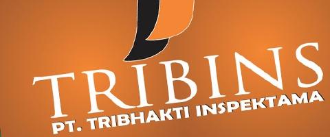 Jasa Pembuatan Website Bandung Murah  Jasa pembuatan website murah Bandung Company Profile Tribins
