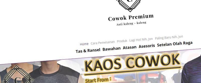 Jasa Pembuatan Website Bandung Murah cowokpremium.com Jasa pembuatan website murah Bandung Toko Online cowokpremium.com