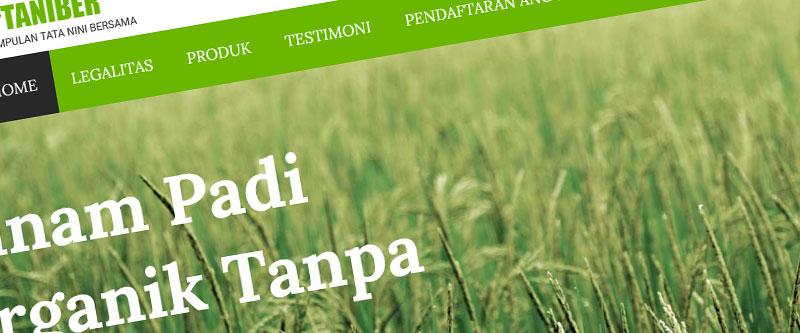 Jasa Pembuatan Website Bandung Murah Taniber Jasa pembuatan website murah Bandung Company Profile Taniber