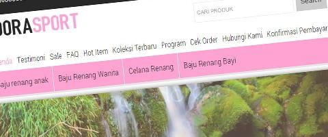 Jasa Pembuatan Website Bandung Murah  Jasa pembuatan website murah Bandung Toko Online Edora Sport