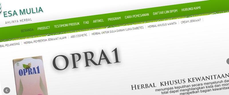 Jasa Pembuatan Website Bandung Murah  Jasa pembuatan website murah Bandung Toko Online Esa Mulia