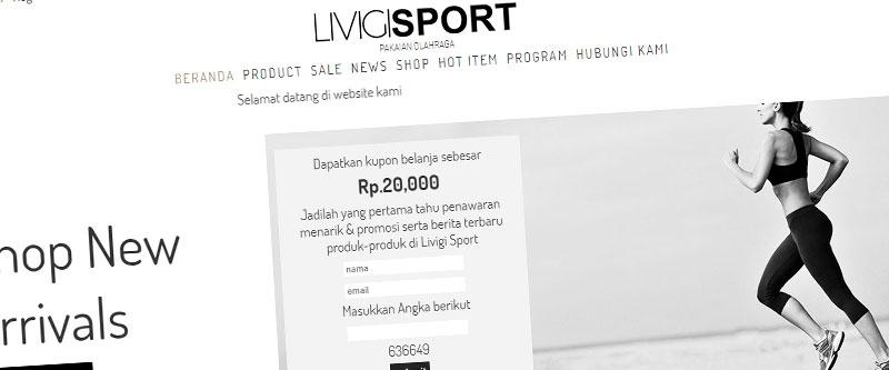 Jasa Pembuatan Website Bandung Murah  Jasa pembuatan website murah Bandung Toko Online Livigi Sport