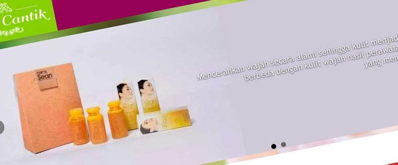 Jasa Pembuatan Website Bandung Murah  Jasa pembuatan website murah Bandung Toko Online Mari Cantik