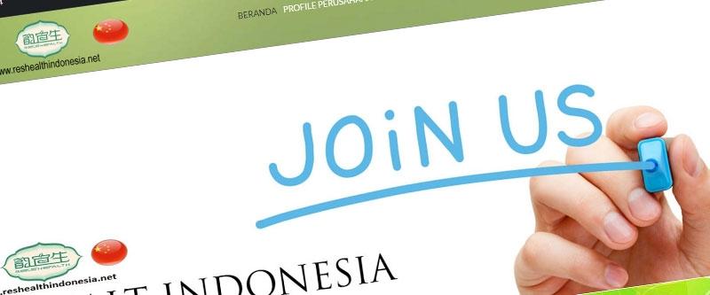 Jasa Pembuatan Website Bandung Murah  Jasa pembuatan website murah Bandung Toko Online Reshealth Indonesia