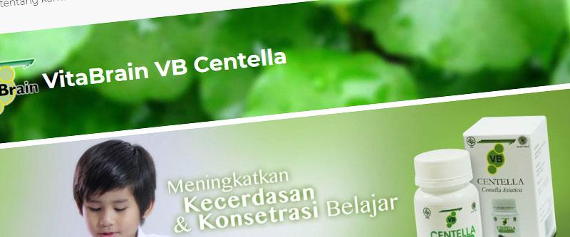 Jasa Pembuatan Website Bandung Murah vitabrainvbcentella.com Jasa pembuatan website murah Bandung Toko Online vitabrainvbcentella.com